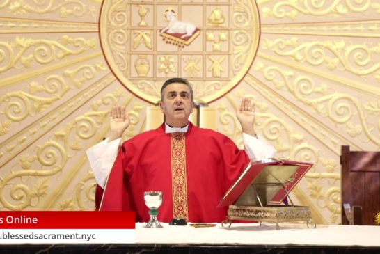 Mass Online   July 6 2020   Fr. Gabriel Toro