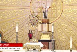 Holy Hour   July 16 2020   Fr. Gabriel Toro