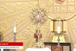 Holy Hour   July 30 2020   Fr. Gabriel Toro