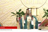 Mass Online | September 6 2020 | Fr. Saint Charles Borno (Sunday  English Mass)